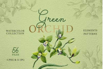 Green Orchid Watercolor Clipart, Digital Flowers, Clipart, Hand Painte