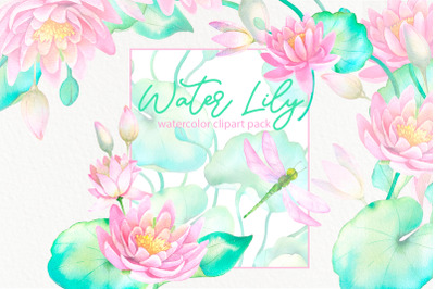 Watercolor waterlily lotus flowers and dragonfly clip art