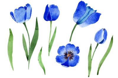 Blue tulip flower watercolor png