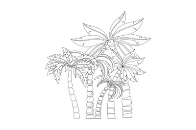 Palm trees for coloring book pages