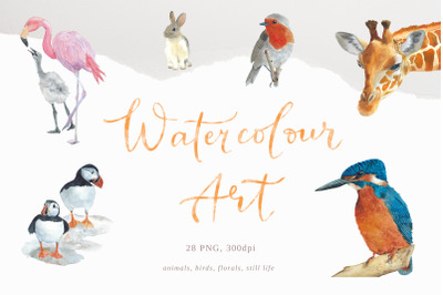 Watercolour wall art, Watercolour painting prints, 28 png