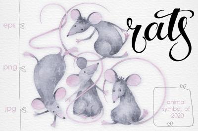 Funny rats.