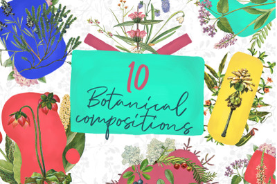 10 Botanical Compositions