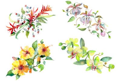 Bouquet of flowers Mozambique watercolor PNG