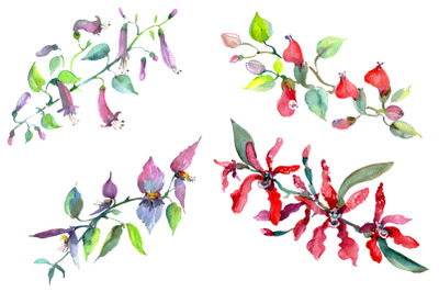 Bouquet of flowers Rainbow watercolor PNG