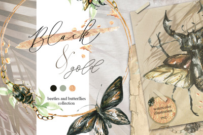 Gold & black, bettles and butterflies collection