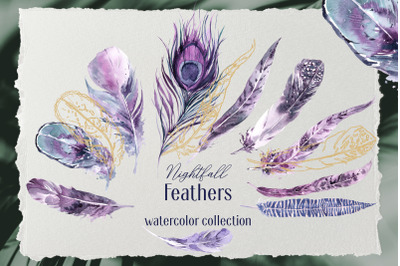 Nightfall Feathers Watercolor Clipart