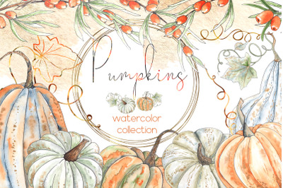 Pumpkins. Watercolor collection