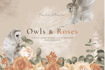 Hand drawn Graphics Owls & Roses for wedding stationery design