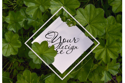 Summer square card mockup on green leaves