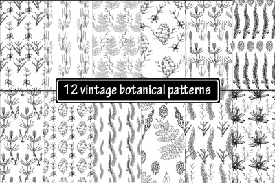 12 hand drawn vintage botanical patterns.