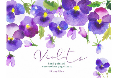 Watercolour Flower Hand Painted Clip Art  Violets, Pansy PNG