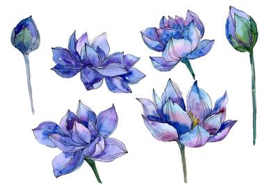 Blue watercolor lotus flower png