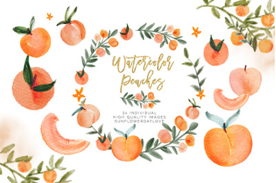 Watercolor Peach Clip Art, Peach leaves Clipart