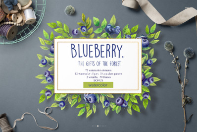 Blueberry. The gifts of the forest.