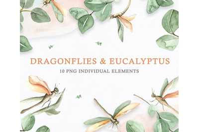 Watercolor Set Eucalyptus and Dragonflies