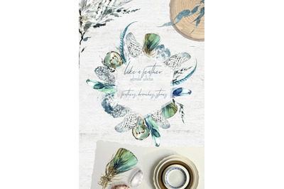 Like a Feather Watercolor Collection