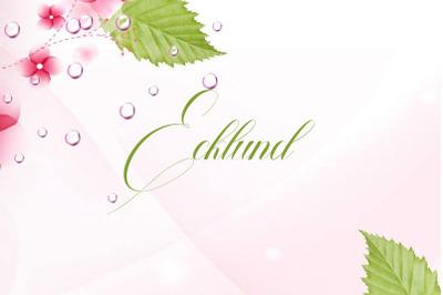 Ecklund