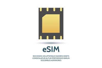Embedded sim icon