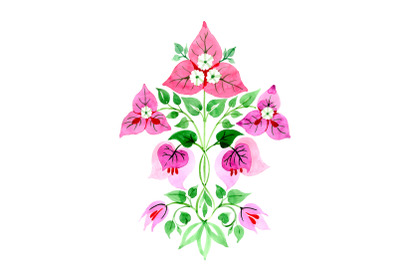 Bougainvillea ornament pink watercolor png