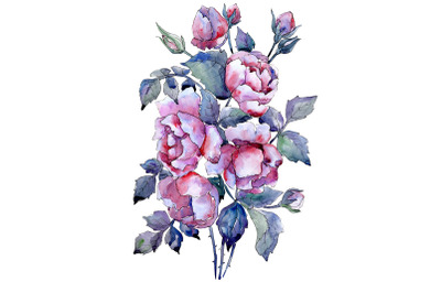 Bouquet of roses flower watercolor png