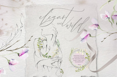 Wild and elegant flowers. Watercolor collection