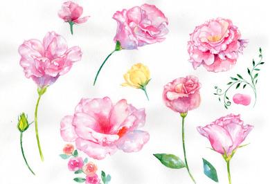 Pink Rose Strength of love watercolor png
