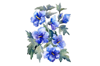 Bouquet of flowers blue Nona watercolor png