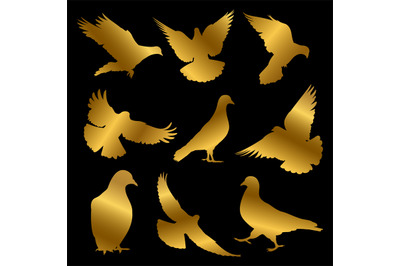Golden dove silhouettes isolated on black background