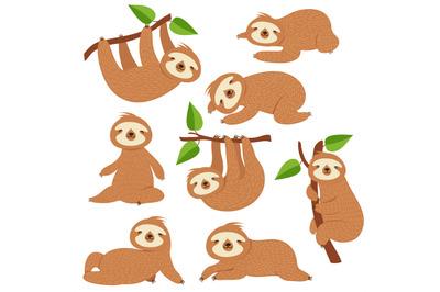Cartoon sloths. Cute sloth hanging on branch in amazon rainforest. Laz