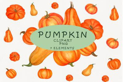 Pumpkin watercolor clipart