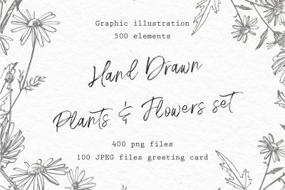 Hand Drawn Plants & Flowers set