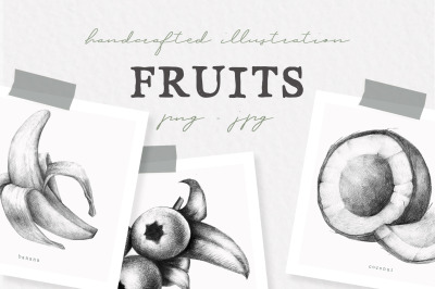 Hand drawn Fruit Collection