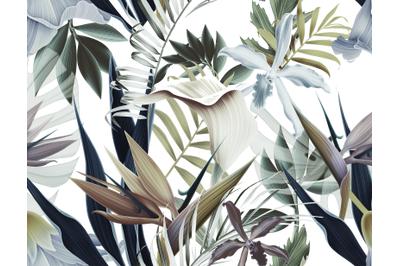 PNG Tropical FlowersDigital Paper