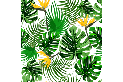 Christmas PNG Tropical Flowers Digital Paper
