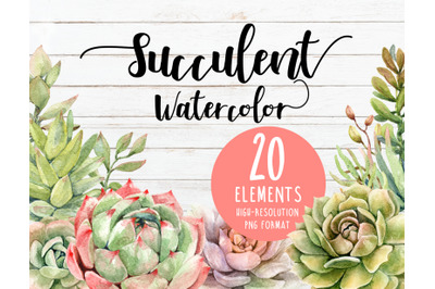 Watercolor succulent, cactus, cacti clipart individual element