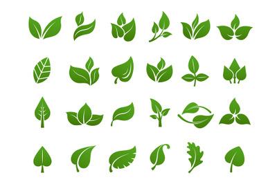Green leaves logo. Plant nature eco garden stylized icon vector botani