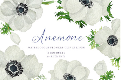 Watercolour Anemone, White, blue Anemones, Wedding clipart