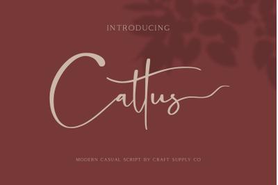 Cattus - Modern Casual Script Font