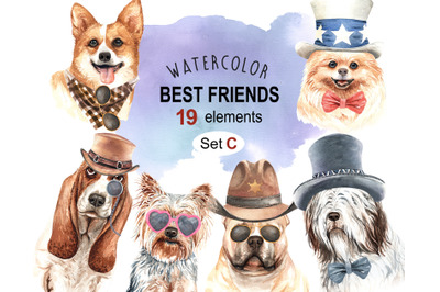 Dogs and accessories watercolor clipart, Pets clip arts SETC