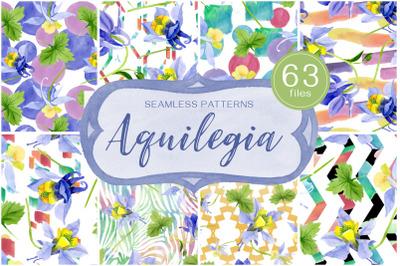 Columbine or Aquilegia flower watercolor png