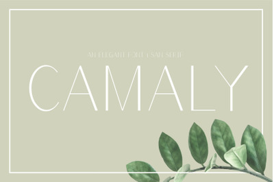 Camaly | sans serif