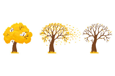 Autumn tree. Yellow leaves fall, trees with fallen leaves and orange l