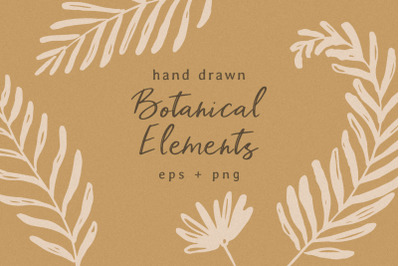 Hand Drawn Botanical Elements
