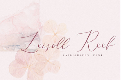 Leisoll Reef, calligraphy font