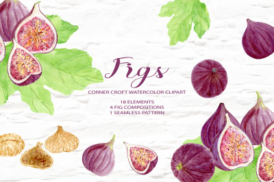 Watercolor fig clipart