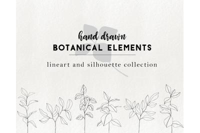 Hand drawn floral elements - branch clip art, botanical illustrations