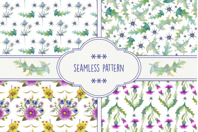 Seamless patterns with wildflowers, thistles, prickly leaves. Watercolor.