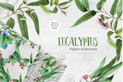 Eucalyptus branch Watercolor png