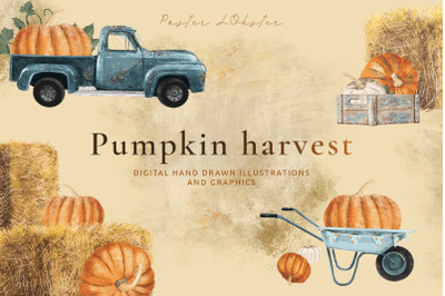 Pumpkin harvest hand drawn autumn illustration set